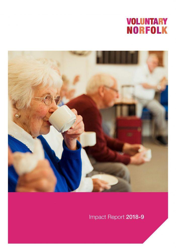 Voluntary Norfolk's Impact Report 2018-9